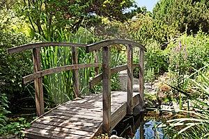 Botanical Garden Stock Photo - Image: 19963300