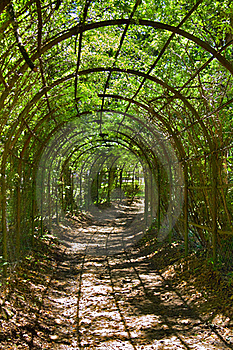 Archway In Park Royalty Free Stock Photo - Image: 19964565