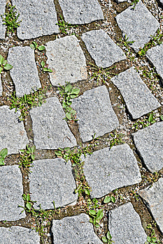 Pavement Stone Tile Royalty Free Stock Photo - Image: 19968255