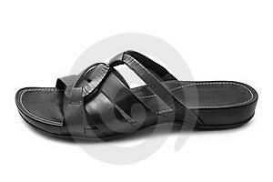Sandal Royalty Free Stock Image - Image: 19968856