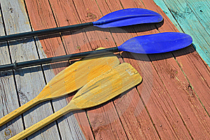 Oars And Paddles Stock Image - Image: 19980031