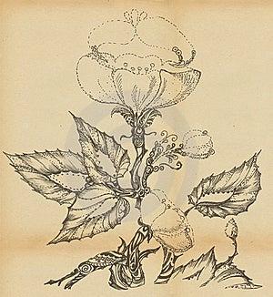 Wild Rose Flower Royalty Free Stock Photos - Image: 19993318