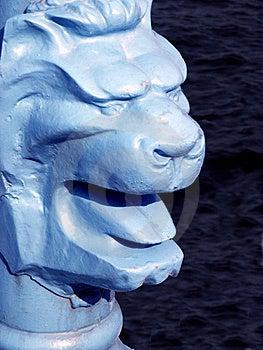 Головка львов Стоковое Фото