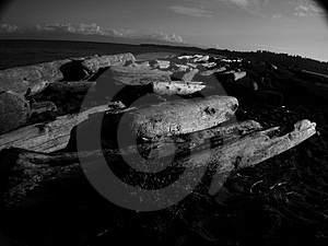 Esquaimalt Lagoon Stock Images