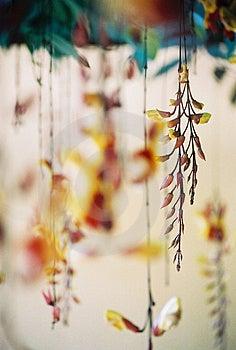Hanging Stock Photos