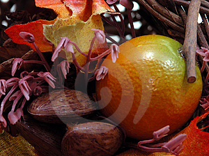 Fruits & Nuts Stock Photos - Image: 24453