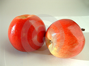 Red Apples Free Stock Photo