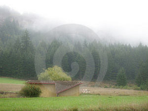 Foggy Farm Free Stock Photography