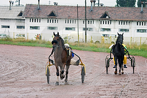 Two Racing Horse Carriages Free Stock Photo