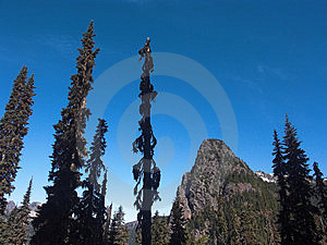 Guye Peak And Trees Stock Photo