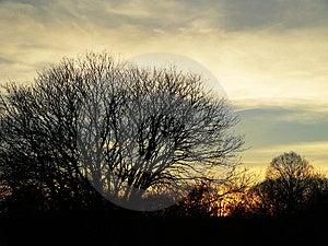 Autumn Sunset Stock Foto's