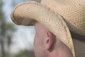 Cowboy Looking Away Free Stock Photo
