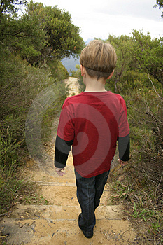 Bushwalking Stock Photo