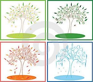 Tree Four Seasons Stock Images - Image: 20017734