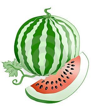 Watermelon. Stock Image - Image: 20020571