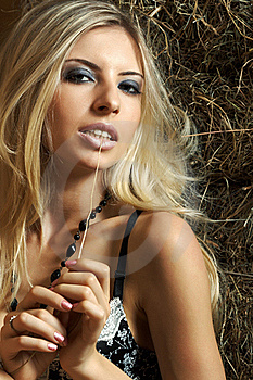Glamour On The Hay Royalty Free Stock Image - Image: 20022286