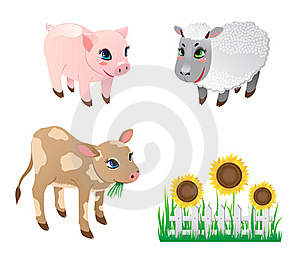 Farm Animals Royalty Free Stock Photo - Image: 20025755