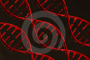 Dna Stock Photography - Image: 20029222