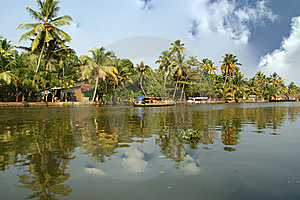 Coconut Palms On The Shore Of The Lake Royalty Free Stock Photography - Image: 20043337