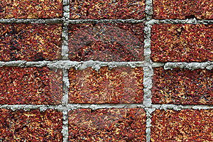 Wall Royalty Free Stock Images - Image: 20044729