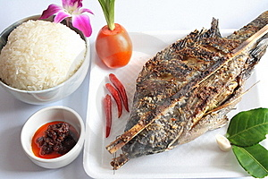 Set Grilled Fish. Stock Photos - Image: 20063733