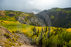 Foliage In The San Juan Mountains Royalty Free Stock Images - Image: 20064059