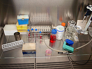 A Laboratory Royalty Free Stock Image - Image: 20074146