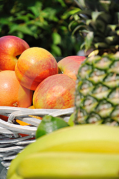 Fruits Arrangement Stock Photos - Image: 20074983