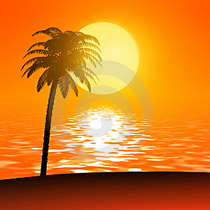 Sunset Palm Stock Images - Image: 20075914