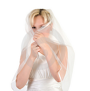 Bride. Stock Photography - Image: 20087922