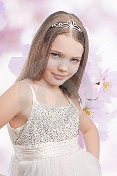 Cute Blossom Royalty Free Stock Photo - Image: 20090635