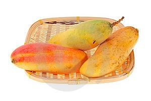 Fresh Mangoes Stock Image - Image: 20090811