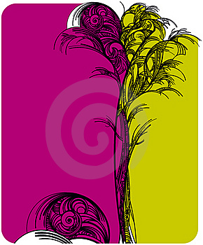 Lacy Tree Stock Image - Image: 20092991