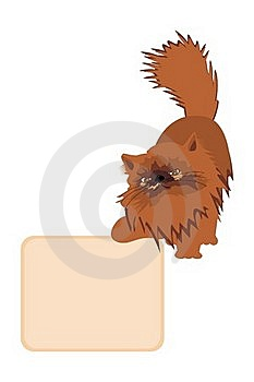 Ginger Cat With Table Stock Photo - Image: 20094000