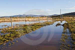 Flood Royalty Free Stock Photo - Image: 20094225