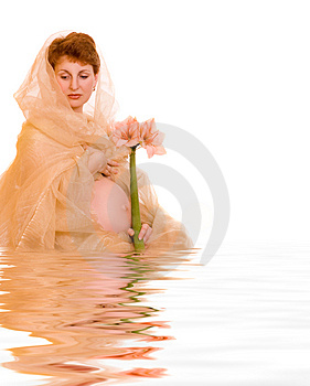 Beautiful young pregnant woman with flower in rendered water Royalty Free Stock Photography