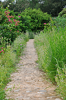 Garden Path Royalty Free Stock Photo - Image: 20104645