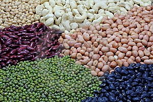Beans And Nut Stock Image - Image: 20105341