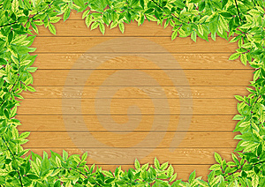Green Leaves On Wood Stock Image - Image: 20105821
