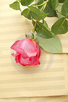 Music And Romance Royalty Free Stock Photo - Image: 20108525