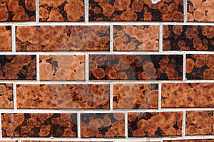 Tile Texture Background Stock Photos - Image: 20109793