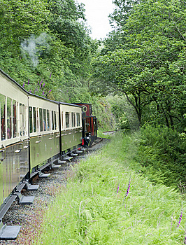 Vale Of Rheidol Railway Stock Photo - Image: 20112860