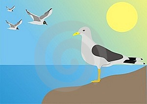 Sea Seagull Royalty Free Stock Photo - Image: 20115435