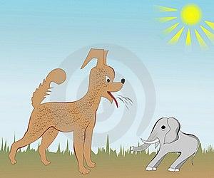 Evil Dog Royalty Free Stock Photos - Image: 20115578