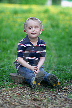 Small Boy Is Sitting On Wooden Stub And Smiling Royalty Free Stock Image - Image: 20116836