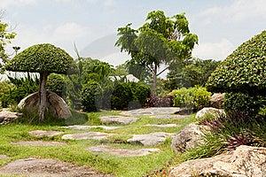 Japanese Garden Stock Photo - Image: 20119940