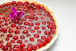 Tart With Raspberries And Curd Royalty Free Stock Photography - Image: 20120437