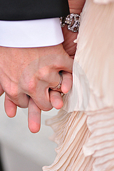 Hands Of The Bride And Groom Royalty Free Stock Photo - Image: 20126245