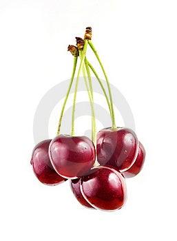 Sweet Cherry Stock Photo - Image: 20130050