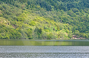 Loch Lomond Stock Photography - Image: 20134832